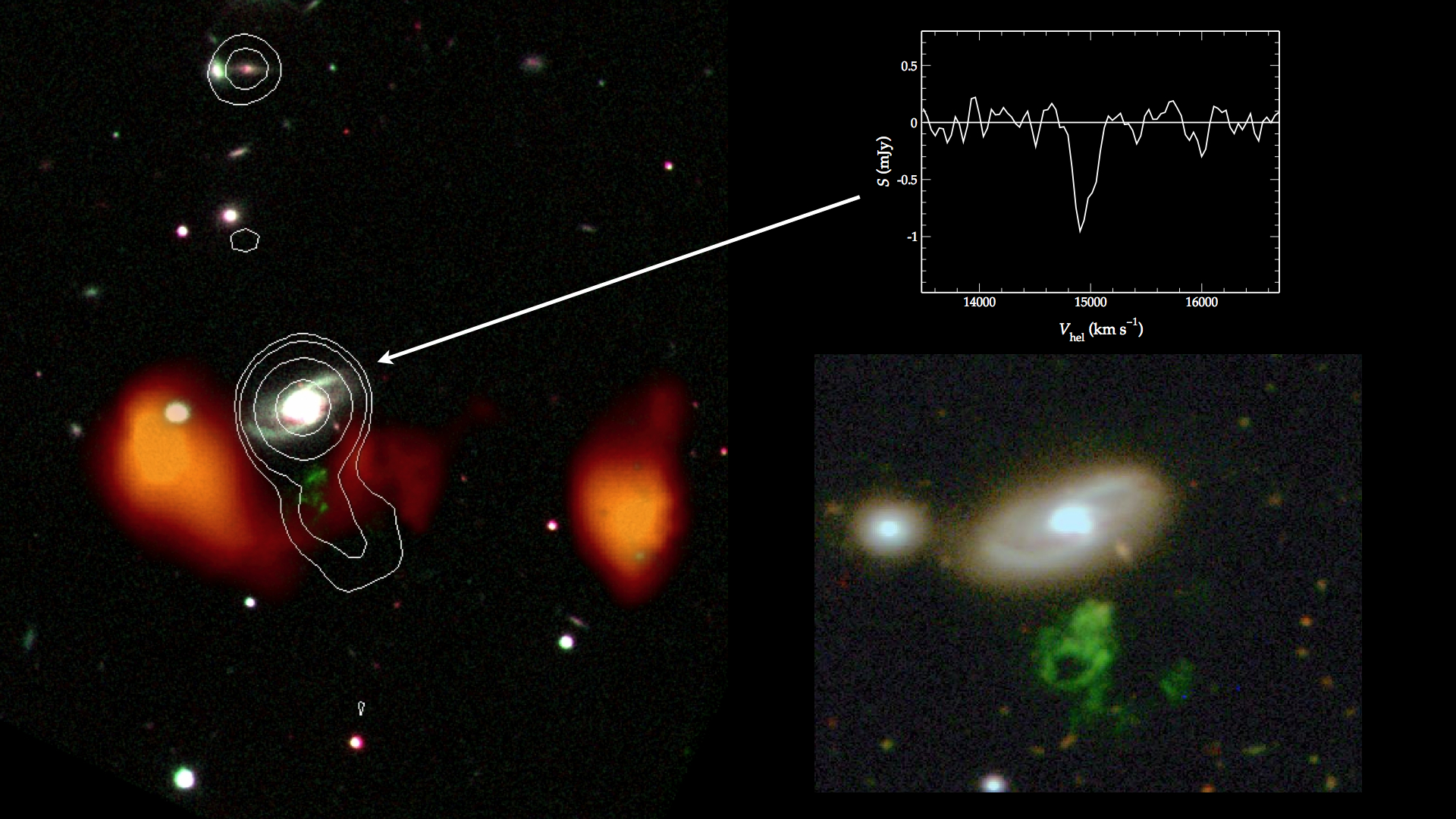 Radio jet (white contours) emanating from the centre of the nearby galaxy IC 2497 headed straight in the direction of Hanny's Voorwerp (green)